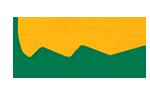 SA Transplant Sports Association